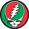 Grateful Dead - Red and Green Steal Your Face Button