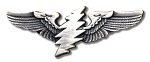 Grateful Dead - 13 Point Lightning Bolt Wings Pin