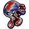 Grateful Dead - Melting SYF Patch