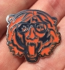 Phish - Trey Chicago Bears Hat Pin