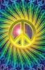Peace Colors Poster