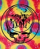 Grateful Dead - Steal Your Dancers Tie Dye Tapestry