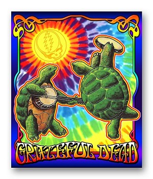 Grateful Dead - Terrapin Sunshine Fleece Throw Blanket