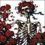 Grateful Dead - Skeleton and Roses Button