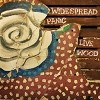 Widespread Panic - Live Wood LP Record