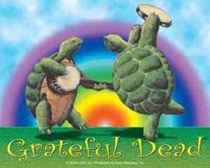 Grateful Dead Terrapin Turtles Rainbow Sticker
